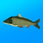 True Fishing. Fishing simulator APK (MOD, Unlimited Money) 1.14.4.670