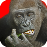 Flying Gorilla APK (MOD, Unlimited Money)2.143
