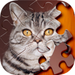 Jigsaw Puzzle APK (MOD, Unlimited Money) 1.0.22