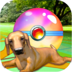 Puppy GO APK (MOD, Unlimited Money) 2.9