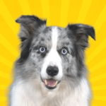 Real Pets™ by Fruwee APK (MOD, Unlimited Money) 296