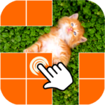 What is picture behind cell APK (MOD, Unlimited Money) 0.3.6