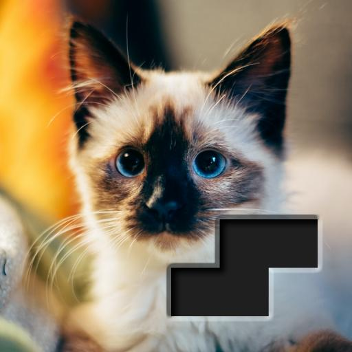 Block Square Jigsaw Puzzle APK (MOD, Unlimited Money) 1.0.4