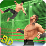 Tag Team Wrestling Superstars 2019: Hell In Cell APK (MOD, Unlimited Money) 1.1.1