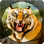 Forest Animal Hunting 2018 – 3D APK (MOD, Unlimited Money) 1.2.4