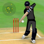 Smashing Cricket – a cricket game like none other APK (MOD, Unlimited Money) 3.0.2