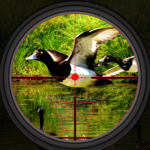Duck Hunting 2019 – Real Wild Adventure Shooting APK (MOD, Unlimited Money) 1.0