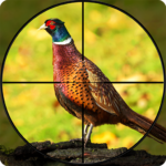 Pheasant Shooter: Crossbow Birds Hunting FPS Games APK (MOD, Unlimited Money) 1.1