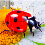Insect Jigsaw Puzzles Game – For Kids & Adults 🐞 APK (MOD, Unlimited Money) 25.0