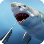 Spearfishing Wild Shark Hunter – Fishing game APK (MOD, Unlimited Money) 1.8