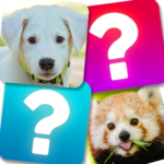 Memory Game: Animals APK (MOD, Unlimited Money) 4.1