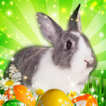 Hidden Object: Easter Egg Hunt APK (MOD, Unlimited Money) 1.1.85b