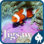 Sea Life Jigsaw Puzzles APK (MOD, Unlimited Money) 1.9.17