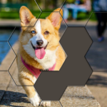 Hexa Puzzle Jigsaw: Anime Collection HD APK (MOD, Unlimited Money) 1.15