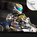 Kart Racing Ultimate APK (MOD, Unlimited Money) 8.0