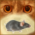 Mouse on the Screen for a Cat – Game for cats APK (MOD, Unlimited Money) 22.0